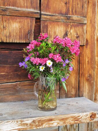 Bouquet of mountain flowers photo