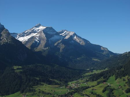 Beautiful Oldenhorn