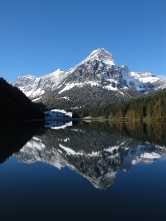 swiss alps: Śniegu ograniczone górskich i kolorowych drzew Zdjęcie Seryjne