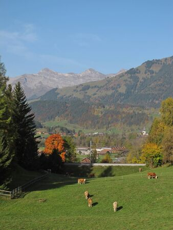 gstaad: Landscape In Gstaad