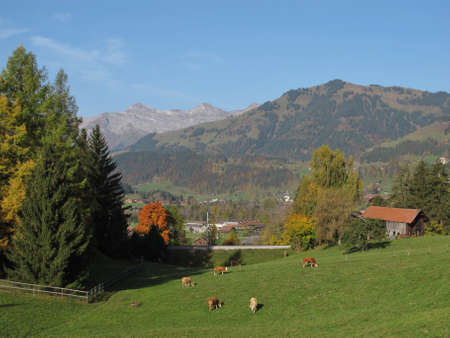 bernese oberland: Autumn In The Bernese Oberland