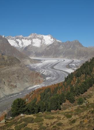 aletsch: Unique Aletsch Glacier In The Autumn