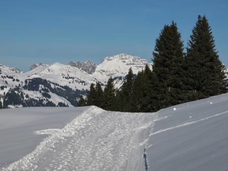 canton berne: Winter Scene In Gstaad