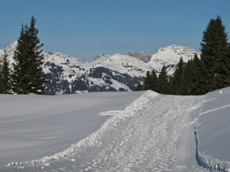 gstaad: Winter Scenery In Gstaad Stock Photo