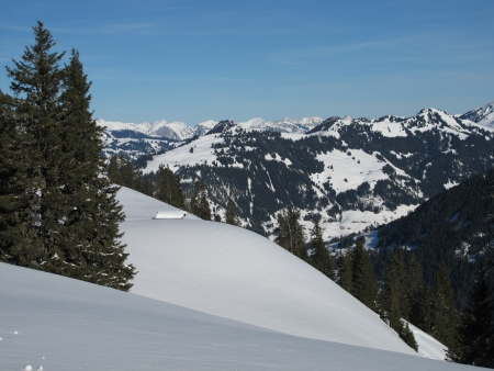 gstaad: Snow Landscape In Gstaad