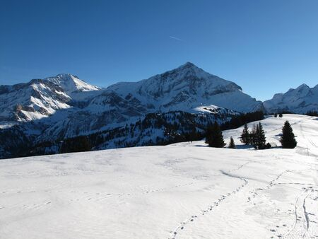 bernese oberland: Winter In The Bernese Oberland, Wispile