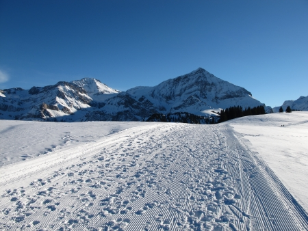 canton berne: Winter Scenery Near Gstaad, Spitzhorn