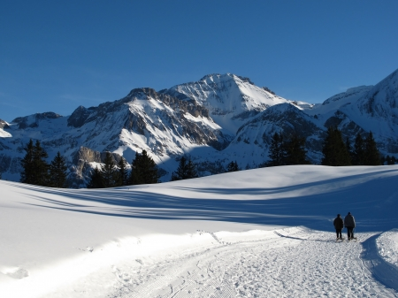 bernese oberland: Winter Scenery In The Bernese Oberland