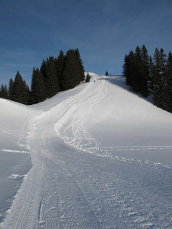 oberland: Sledging Path In the Bernese Oberland