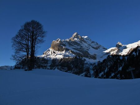 Sunrise in Braunwald, mountain named Ortstock, tree Stock Photo - 17604120