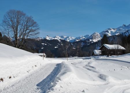 glarus: Winter scenery in Braunwald, Glarus Canton Stock Photo