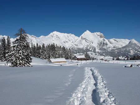 Foot-path towards Sellamatt, Toggenburg photo