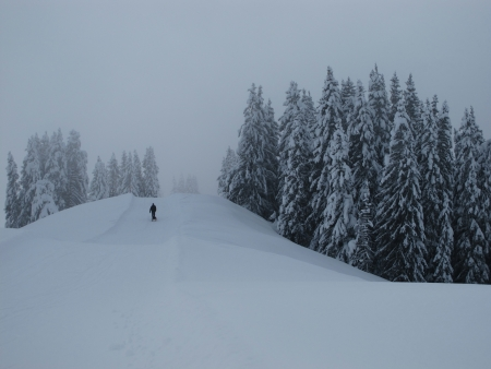 canton berne: Forest in winter, sledging path Stock Photo