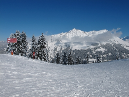 gstaad: On top of the Wispile, snow covered trees and mountains