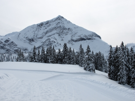 bernese oberland: Spitzhorn in the winter, Bernese Oberland