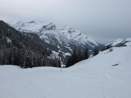 Cold winter day, Oldenhorn