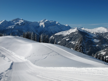 canton berne: Sledging path in the Swiss Alps, high mountains