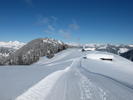 Snow covered huts and forest near Gstaad photo