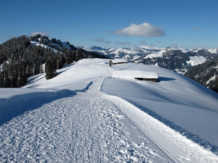 saanenland: Slope on the Wispile, Bernese Oberland