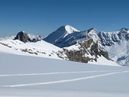 canton berne: View from Glacier De Diablerets, mountains