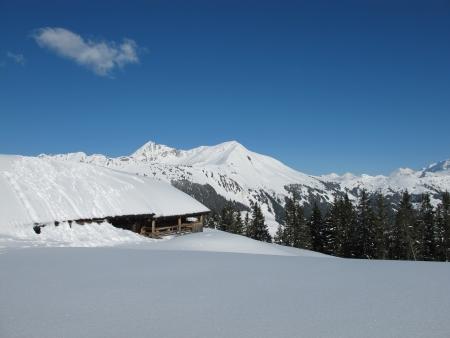saanenland: Winter in the Bernese Oberland