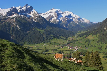 bernese oberland: Beautiful scenery near Gstaad, Bernese Oberland Stock Photo