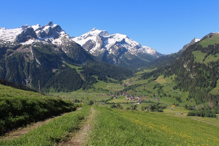 snow capped: Snow capped mountains and green meadow near Gstaad Stock Photo