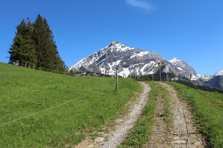 Landscape near Gstaad, gravel road
