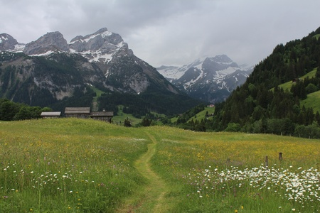 gsteig bei gstaad: Beautiful landscape near Gstaad, mountains and meadow full of wildflowers Stock Photo
