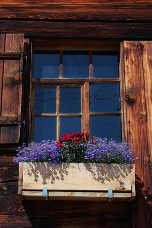 bernese oberland: Flowers decorating a old window of a farmhouse in the Bernese Oberland
