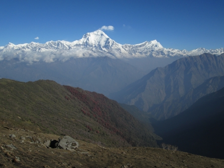 Dhaulagiri in the morning photo
