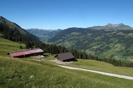 Beautiful Saanenland, region in the Swiss Alps