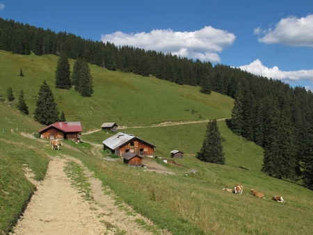 bernese oberland: Farm in the Bernese Oberland