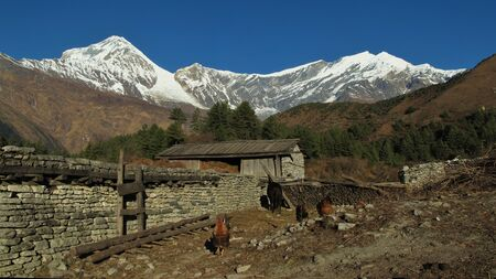 Idyllic village Titi, view of Dhaulagiri and Tukuche Peak photo