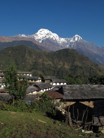 snowcapped: Idyllic village Ghandruk and snowcapped Annapurna South