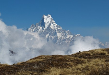 Peak of famous Fish-Tail mountain Machapuchare Stock Photo