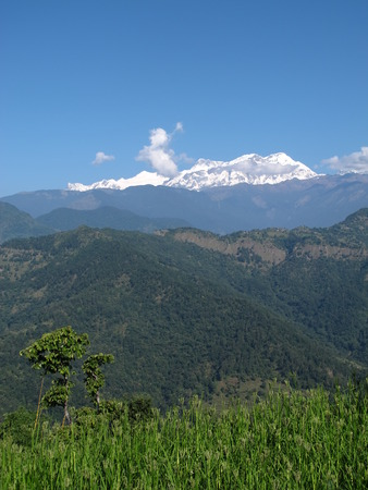 snow capped: Green landscape and snow capped Annapurna Range