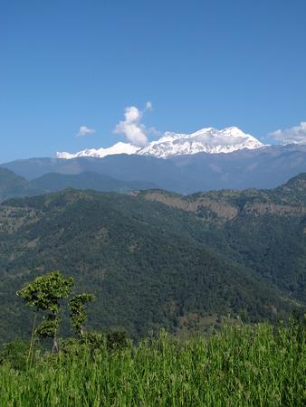 snow capped: Paisaje verde y cumbres nevadas de Cordillera Annapurna