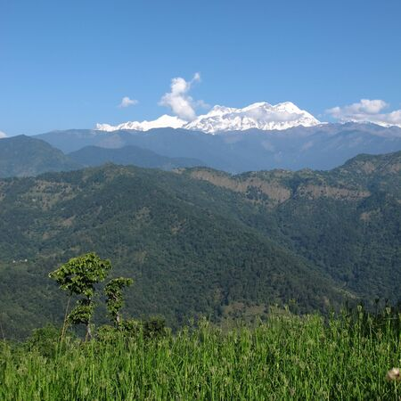 snow capped: View from Nalma, snow Capped Annapurna Range