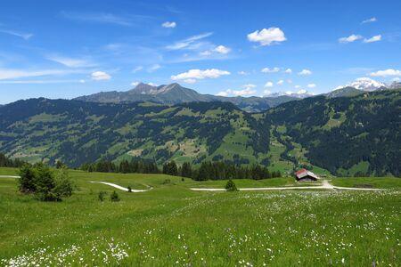 canton berne: Lauenenhorn and green landscape