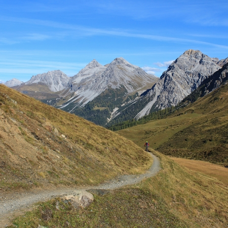 Weisshorn and foot-path, scene in Arosa photo