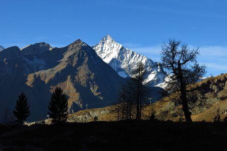 snow capped: Escena de la tarde en Zermatt, nevadas Weisshorn y siluetas de los �rboles