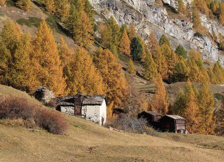 wallis: Autumn scene in Wallis Canton