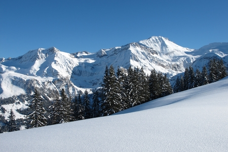 gstaad: Wildhorn, view from the Wispile, mountain near Gstaad