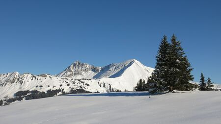 canton berne: Snow covered mountains Lauenenhorn and Gifer