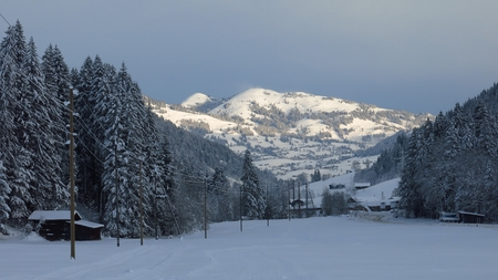 saanenland: Early morning on a winter day, scene near Gstaad