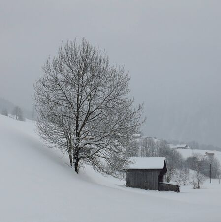 Rural winter scene in the Swiss Alps photo