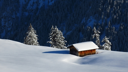 gstaad: Shed in the snow