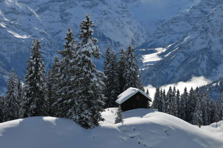 glarus: Winter scene in Braunwald