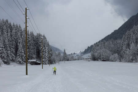 saanenland: Ski slope and snow covered forest